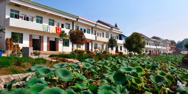 望江杨湾镇:打造特色小镇   助力脱贫攻坚