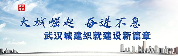 大城崛起 奋进不息——武汉城建织就建设新篇章