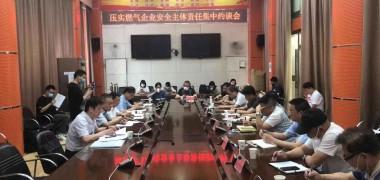 压实安全主体责任,武汉市集中约谈12家燃气企业 (254播放)