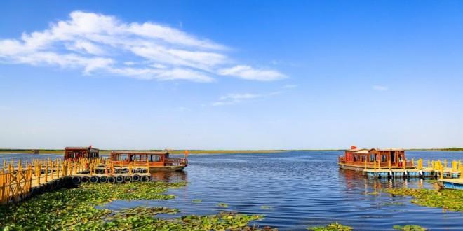 芙蓉出水引客来 中国最大野生睡莲群迎最佳观赏季